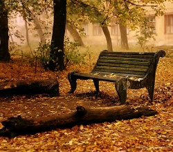 5-nature-wallpaper-autumn-fall