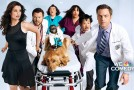 "TV First Impression: ""Animal Practice"""