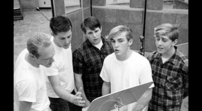 "A Fan's Notes: Jon Stebbins, ""The Beach Boys FAQ: All That's Left To Know About America's Band"""
