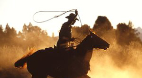 cowboy-thumb-300x225